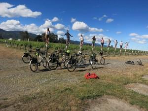 Marlborough Wine Tours by Bike